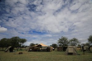 Great-Migration-Camps=-Mobile